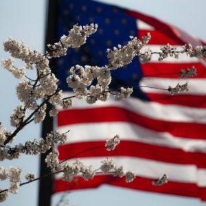 Objectif USA   flag fleurs